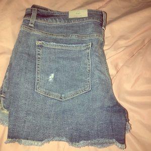 NWT: distressed shorts